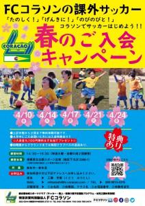 20)幼児春のご入会キャンペーンチラシ